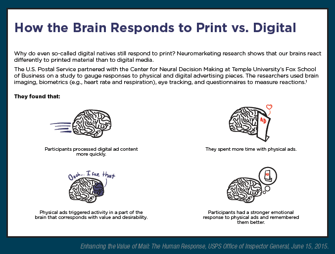 Direct Mail Stimulates Brain | Grassroot Communication